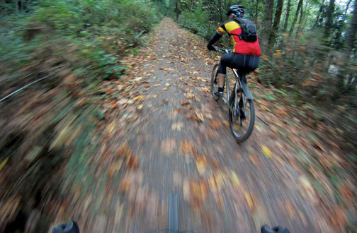 Autumn Bike Rides: Pedaling without the Gore-Tex