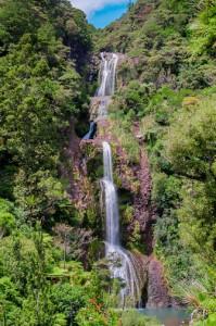 Adventures-NW-Waitakere-Ranges-Regional-Park                          _-4