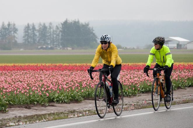 Adventures-NW-Tulip-Pedal-Skagit1