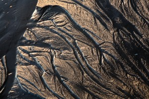 Sand detail. Photo by John D'Onofrio