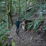 Adventures_NW_Lake_Whatcom_Unauthorized_Mountain_Bike_Trails-2254