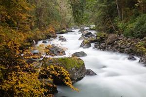 The Nooksack River near Horseshoe Bend. Photo by John D'Onofrio