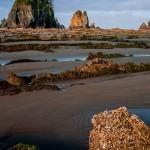 Adventures_NW_Shi_shi_Beach-1008