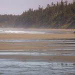 Adventures_NW_Shi_shi_Beach-1118