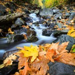 Fossil Creek, Church Mountain