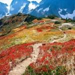 Sahale Arm and Magic Mountain