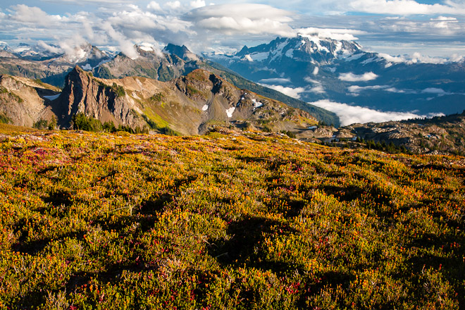Yellow Aster Butte offers stunning views of Mount Shuksan