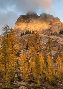 Sunrise illuminates Corteo Peak rising behind stands of golden larches