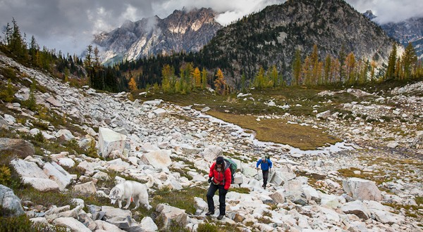 Cascadia Gear: Crampons, A Bear Can and Sweet Boots