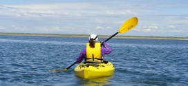 Kayaking the Dungeness National Wildlife Refuge