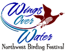 Wings Over Water Festival @ Blaine Middle School
