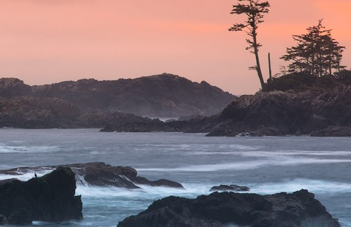 The Wild Pacific Trail: Finding Awe on BC's New Coastal Route
