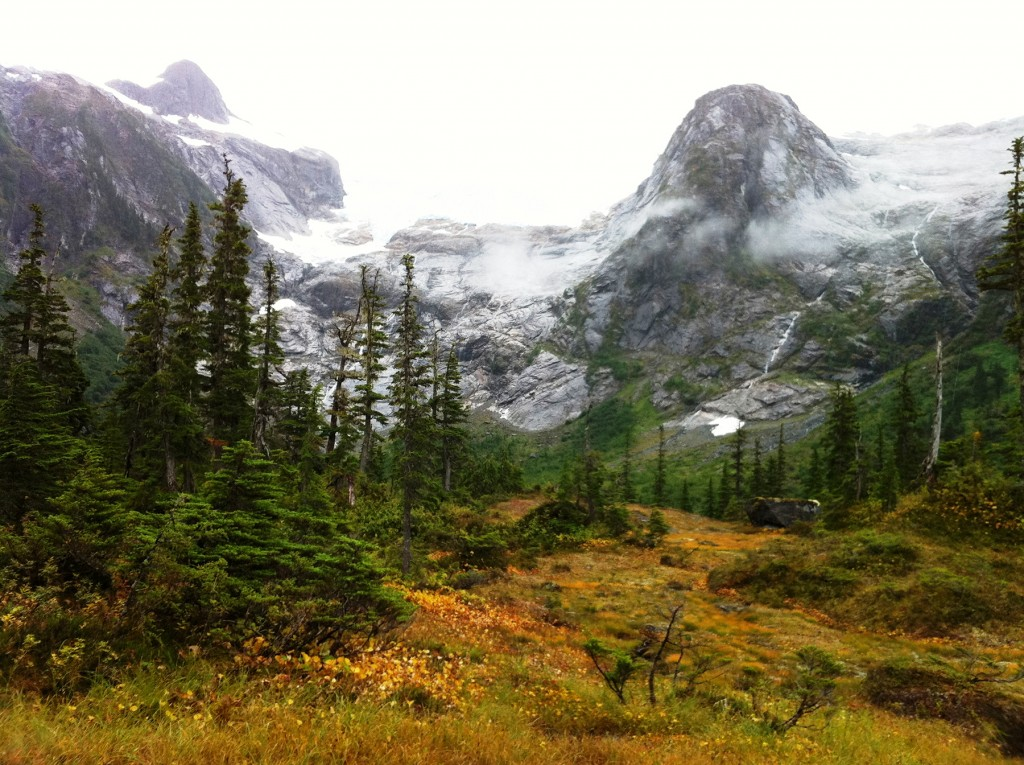 Tongass National Forest. Courtesy of U.S Forest Service