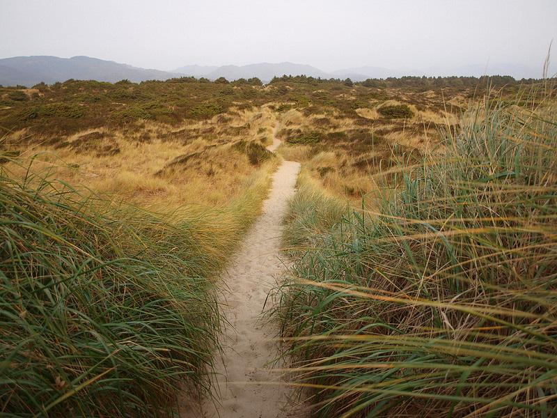 Trail on Bayocean Spit