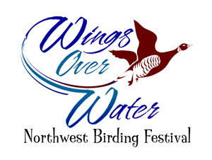 Wings Over Water NW Birding Festival @ Blaine & Birch Bay