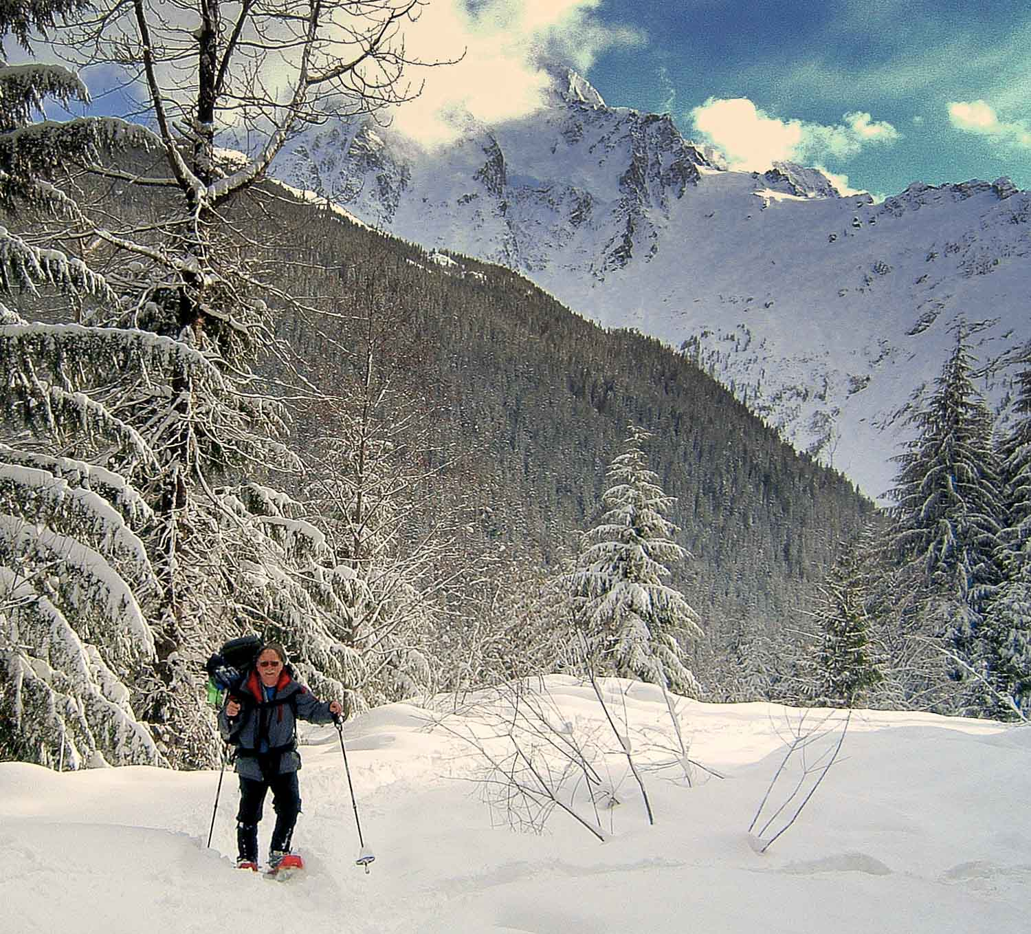 Relatively Winter Wonders for Those Who Wander: Snowshoe Trails along the Mt  TO85