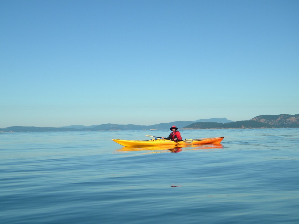 Solitude on the Salish Sea. Photo by Susan Conrad