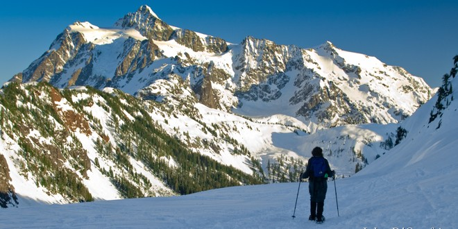 Winter Wonders for Those Who Wander: Snowshoe Trails along the Mt. Baker Highway