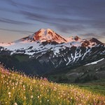 Mount Baker seen from wildflower meadows on Skyline Divide, Mount Baker Wilderness.