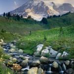 Mount Rainier 14,411ft (4,392m) from Edith Creek, Mount Rainier National Park.