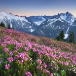 Ruth Mountain and Mount Shuksan North Cascades
