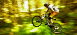 Galbraith's Best Trails: Whatcom Mountain Bike Coalition's Top Ten