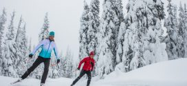Silver Star: BC's World-Class Nordic Ski Destination