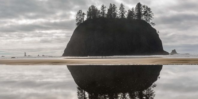 Magic Hours on the Olympic Coast